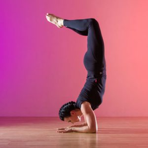 polexpression-poweryoga-kurs